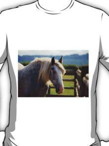 Redwings Major T-Shirt
