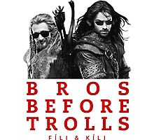 Fili & Kili: Bros Before Trolls Photographic Print