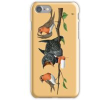 Cock Robin iPhone Case/Skin