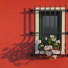 WINDOW AT SUNSET by June Ferrol