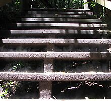 Smokin' Forest Stairs by srowse