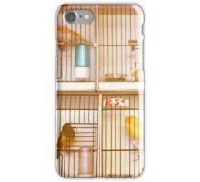 Marché Aux Oiseaux #2 iPhone Case/Skin