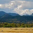 Warrumbungles View #2 by Penny Smith