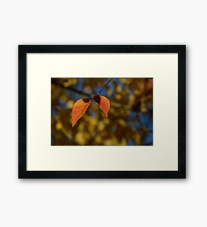 Just Listen Framed Print