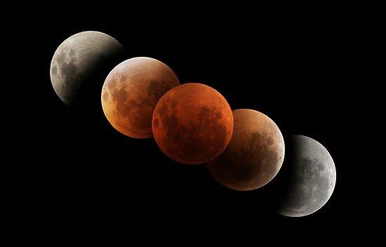 Lunar Eclipse by Phil Hart