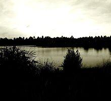 Pond by evilkosmoz
