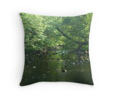 A Brook Runs Through It Throw Pillow