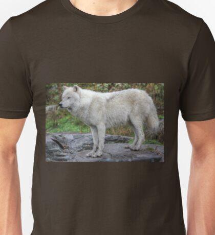 Arctic Wolf HDR Unisex T-Shirt