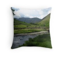 The Stream And.... Throw Pillow