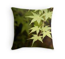 Acer Throw Pillow