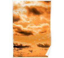 bird flying in the sunset sky Poster