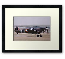Tail up - Here we go! Framed Print
