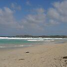 beach view by FantasticRunner