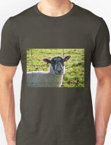 Ewe Looking At Me? T-Shirt