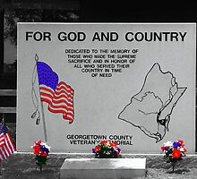 For God and Country by Wendy Mogul