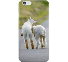 Spring Lambs iPhone Case/Skin