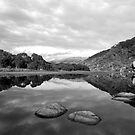 Tidal River Reflection in Black and White by Catherine Davis