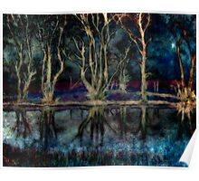 Night Descends On The Pond Poster