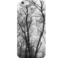 Wintery Trees iPhone Case/Skin