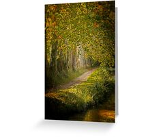 Path in the light Greeting Card