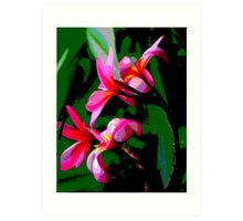Tropical Frangipanis Art Print
