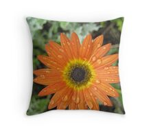 Orange Ganza Drops Throw Pillow