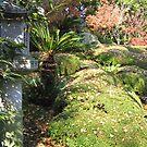 Leaf litter by kossimarsalsa