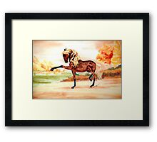 The Spaniard Framed Print