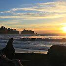 Rialto at Sunset. by Jennifer Bishop