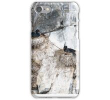 Nesting Cormorans iPhone Case/Skin