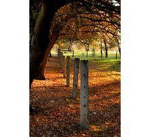 Autumn Day II Photographic Print