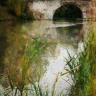 Along the Canal du Midi by Jacinthe Brault