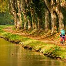 Canal du Midi 10 by Jacinthe Brault