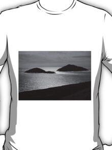 Deenish and Scariff Islands T-Shirt