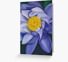 water lillies 2 Greeting Card