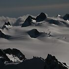 afternoon over Mount Cook snowfields by nymphalid