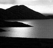 Tranquil Shore by aidan  moran