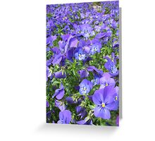 Violet Sea Greeting Card