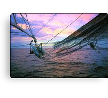 Throw Another Srimp On The Barbie! Canvas Print