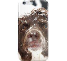 Snowed iPhone Case/Skin