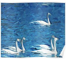 Flock of Trumpeter Swans Abstract Impressionism Poster