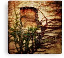Ivy Canvas Print