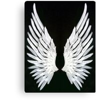 Valentine wings Canvas Print