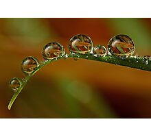 Natural Refractions Photographic Print