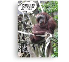 Funny Poster of an Orangutang With a Headache Canvas Print