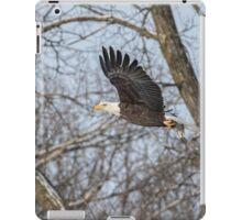 Adult American Bald Eagle  iPad Case/Skin