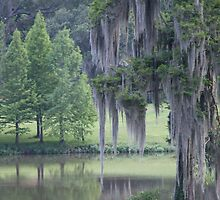 Baton Rouge Beauty by LindsayProject