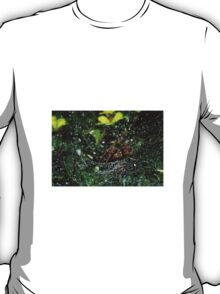 Spider and Droplets T-Shirt