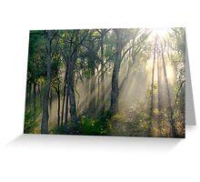 Box-Ironbark Woodland, Yarra Valley, Victoria, Australia. Greeting Card