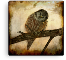 Whispered in the sounds of silence Canvas Print